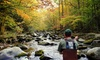 Fly Fishing the Smokies: Five-Hour Guided Fly-Fishing Class for Two or Four from Fly Fishing the Smokies (Up to 53% Off)