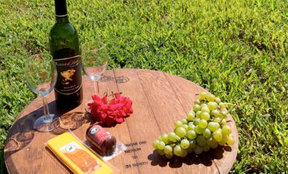 <strong>Wine</strong>-Tasting Package for Two or Four at Running Hare Vineyard (Up to 46% Off)