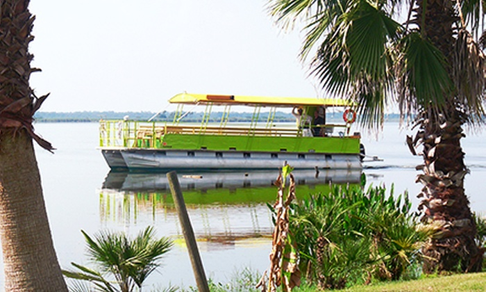 Black Hammock Adventures - Black Hammock: Pontoon Eco Tour for One or Two from Black Hammock Adventures (Up to Half Off)