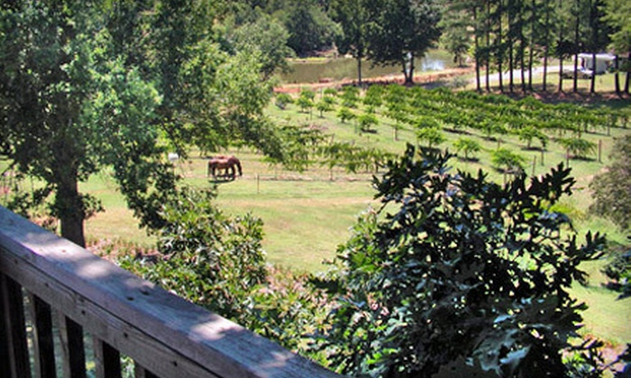 Treehouse Vineyards - Monroe: Winery Tour with Tasting a Glass of Wine and Souvenir Glasses for Two or Four at Treehouse Vineyards (Up to 74% Off)