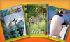 """One-Year Subscription to """"Zoobooks,"""" """"Zoobies,"""" or """"Zootles"""" Magazine: $10 for a Subscription to """"Zoobies,"""" """"Zootles,"""" or """"Zoobooks"""" Magazine from Wildlife Education, Ltd. ($29.95 List Price)"""
