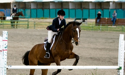 One or Two Private Horseback Riding Lessons at Limelight Farm in Bedford (Up to 66% Off)