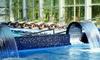 La Quiete - Monticelli Terme (PR): Terme di Monticelli, La Quiete Country House - Soggiorno con ingresso spa da 69 € o con più cena da 89 € per due persone