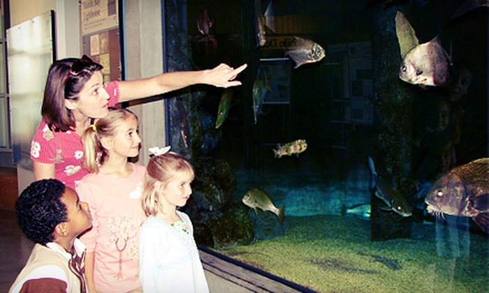 Dauphin Island Sea Lab - Dauphin Island: Aquarium Admission for Two Adults with Two Optional Children's Admissions at Dauphin Island Sea Lab (Up to Half Off)