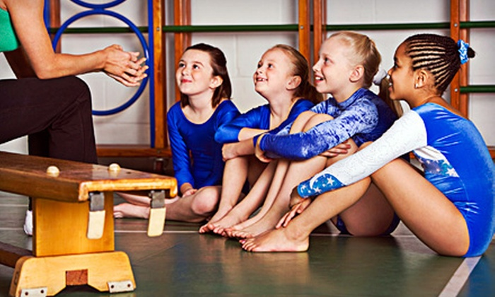 Action Gymnastics Academy - Multiple Locations: Three or Five Open-Gym Sessions or a Birthday Party for Up to 24 Kids at Action Gymnastics Academy (Up to 53% Off)