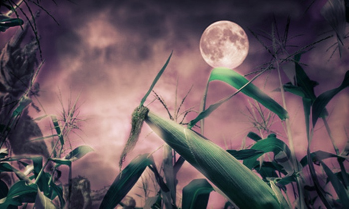 Heaps Haunted Corn Maze - Seward: Heaps Haunted Corn Maze Visit with Hayride for Two, Four, or Six (Up to 51% Off)