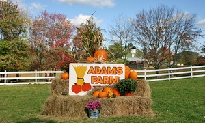 Adam's Farm: Fall Farm Outing for Up to Six at Adam's Farm (Up to a40% Value). Four Weekends Available.