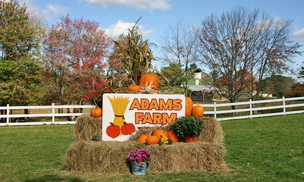 Fall Farm Outing for Up to Six at Adam's Farm (Up to 27% Off). Five Options Available.