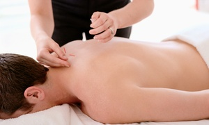 Healthquest Wellness Center: One, Three, or Six Acupuncture Treatments at Healthquest Wellness Center (Up to 79% Off)