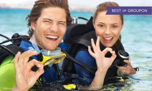 Bellevue Divers: Open Water, Open Water and Dry Suit, or Platinum Diving Class Packages at Bellevue Divers (Up to 58% Off)