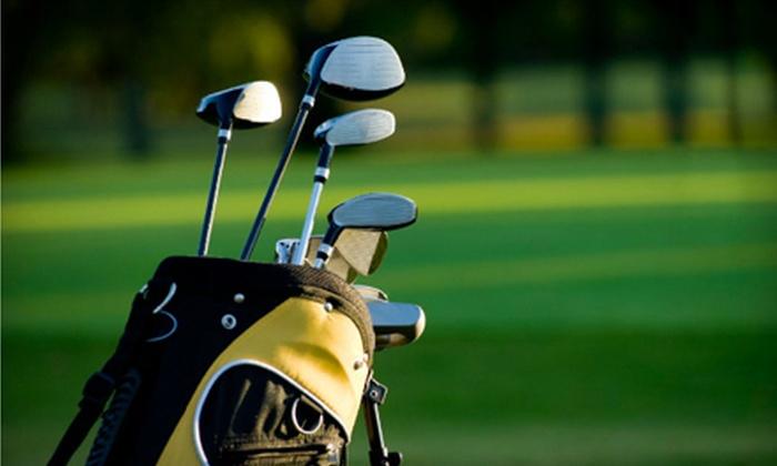 Sweet Swing Golf, Inc. - Tucker: $25 Worth of Golf Lessons