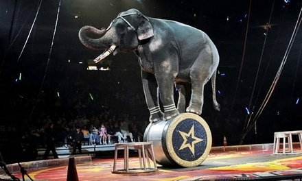 El Jebel Shrine Circus at 1STBANK Center on May 1–3 (Up to 51% Off)