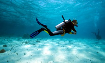 Beginner's <strong>Scuba</strong> Dive for One, Two, or Four with Gear Included at Big Kahuna Watersports (45% Off)
