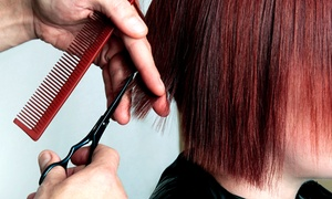Connie Cutz: Men's and Women's Cut and Coloring Packages at Connie Cutz (Up to 66% Off). Five Options Available.