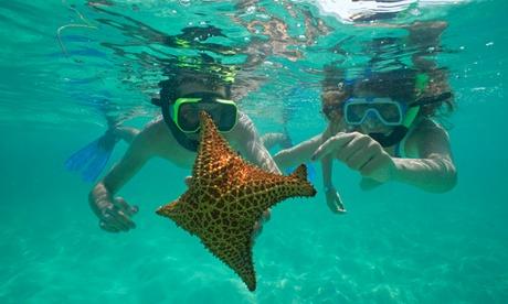 Excursión en lancha rápida por la costa hacia la playa de Camp de Mar para niño o adulto desde 9,95 €
