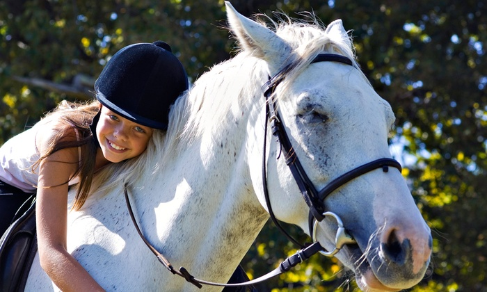 Seaton Hackney Stables - Morris: Horseback-Riding Lesson and Trail Ride for One, Two, or Four at Seaton Hackney Stables (Up to 50% Off)