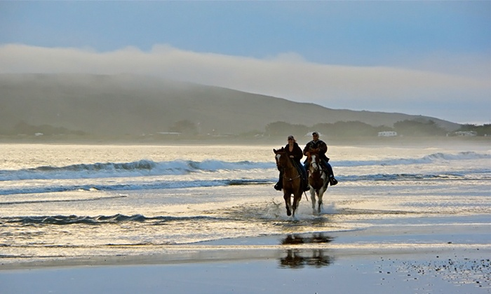 Bad Boy Cowboys - Bodega: Weekday Beach Horseback Ride for Two or Four or Weekend Ride for Two from Bad Boy Cowboys (Up to 35% Off)