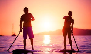 Sea & Board Sports Hawaii: 2 Hour Guided Sunset Paddleboard Turtle and Nature Tour for Two or Four from Sea & Board Sports Hawaii (40% Off)