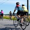 Up to 43% Off Wine-Tasting Bike Tour