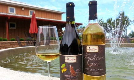 Wine Tasting Package for Four with Either Wine Credit or Charcuterie Board at Crow River Winery (Up to 47% Off)