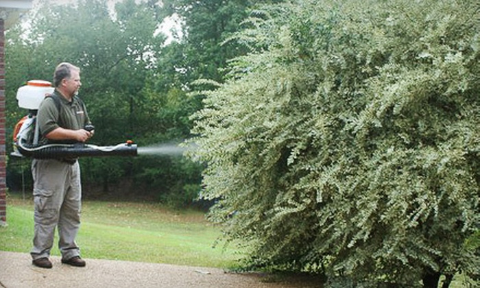 Advantage Pest Services - Jackson: Mosquito- or Pest-Control Treatment or Two Months of Mosquito Control from Advantage Pest Services (Up to 71% Off)