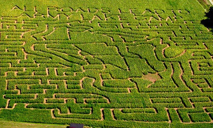 Army Lake Camp - East Troy: Corn-Maze Adventures for Two, Four, or Six at Army Lake Camp (Up to 61% Off)