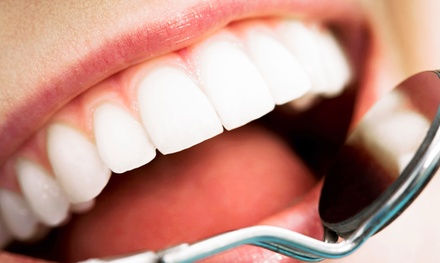 Dental Exam and X-rays with Cleaning or Gum-Disease Screening at Enchanting Dentistry (83% Off)