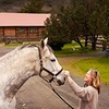 Half Off Horse-Riding Lesson at Mark West Stables