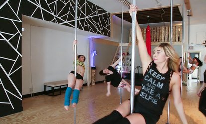 image for Three Pole- or Aerial-<strong>Fitness Classes</strong> or Dance Party with Champagne for 14 at The Brass Ring (Up to 65% Off)