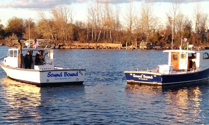 sound bound fishing charters in new rochelle ny groupon