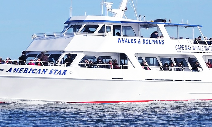 The Starlight Fleet - The Starlight Fleet: Buffet Cruise and Dolphin-Watching Tour for Two or Four from The Starlight Fleet (Up to 46% Off)