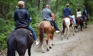 Sunny Stables: Randonnée à cheval de 1 h pour 2 ou 4 personnes avec Sunny Stables (jusqu'à 58 % de rabais)