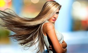 Abby Pond at G Squared Salon: Haircut Packages or Brazilian Blowout from Abby Pond at G Squared Salon (Up to 67% Off). Five Options Available.