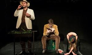 Theater am Sachsenring: 2 Karten für ein Theaterstück nach Wahl im Theater am Sachsenring (50% sparen)
