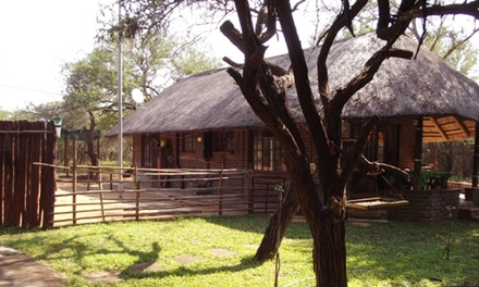 Kruger National Park: Two to Six-Night Anytime Self-Catering Stay for Six at Leadwood Koffee