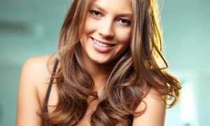 1202 Salon and Spa: One Blow-Dry or Haircut Package at 1202 Salon and Spa (Up to 58% Off). Four Options Available.