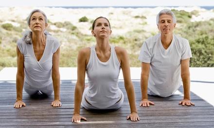 Five Yoga Classes at Prana Yoga Of Northport (65% Off)