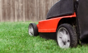 Sundrop Gardens Landscaping: $125 for Six Weeks of Lawn Service from Sundrop Gardens Landscaping ($250 Value)