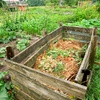 50% Off Composted Top Soil or Ground Cover