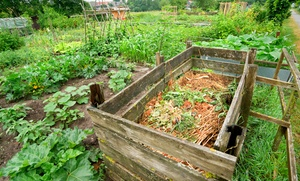 Mw Horticulture Recycling Facility, Inc.: $25 for $50 Toward Composted Top Soil or Ground Cover at MW Horticulture Recycling Facility, Inc.