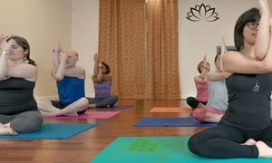 The Happy Yogi: $49 for One Month of Unlimited Yoga Classes at The Happy Yogi ($127 Value)
