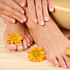 Up to 85% Off Detox Footbaths in Holmes