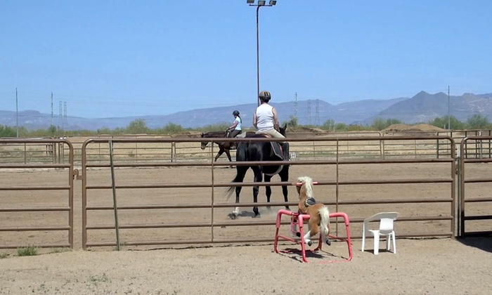 The Joni Fitts School of Horsemanship - Pinnacle Peak Equestrian Center: Two or Four Private or Group Horseback-Riding Lessons at The Joni Fitts School of Horsemanship (Up to 52% Off)