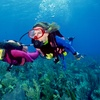Up to 65% Off Scuba Certification or Refresher Course