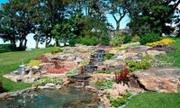Southport Flower Show: One-Day Entry for One or Two, Victoria Park, 18 - 21 August