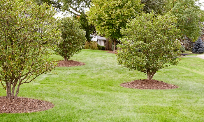 Metro Pest Man - Atlanta: Perimeter Mosquito Treatment for up to 1/2 Acre or One Acre from Metro Pest Man (Up to 72% Off)