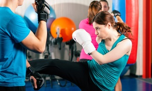 Gangi Martial Arts & Fitness: 10 or 20 Kickboxing Classes at Gangi Martial Arts & Fitness (Up to 66% Off)