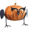 Hoo Knew Owl-Shaped Pumpkin Holders - Set of Two