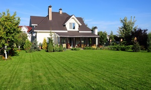 Action Property Maintenance: $35 for a Lawn Mowing, Edging, and Path Blowing Service with Action Property Maintenance (Up to $70 Value)