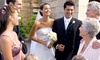 Trendimi: $59 for an Online Wedding-Planner Course with Finance and Business-Management Training from Trendimi ($529 Value)